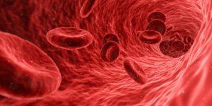 80-Fakten-zum-menschlichen-Blut-Bestandteile-Wussten-Sie