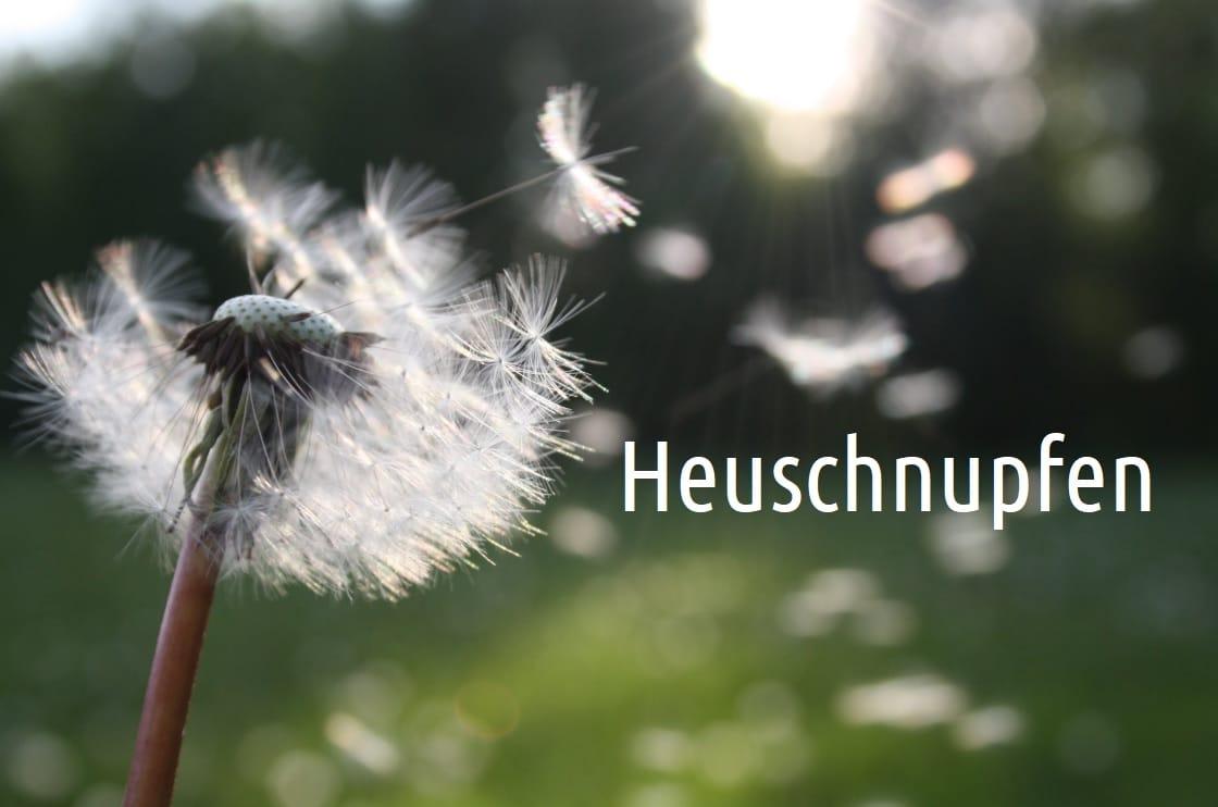 Heuschnupfen - Ursachen, Symptome und Behandlung