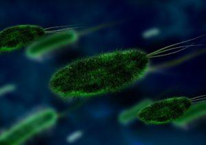 Einige Viren produzieren insulinähnliche Hormone, die Krankheiten verursachen