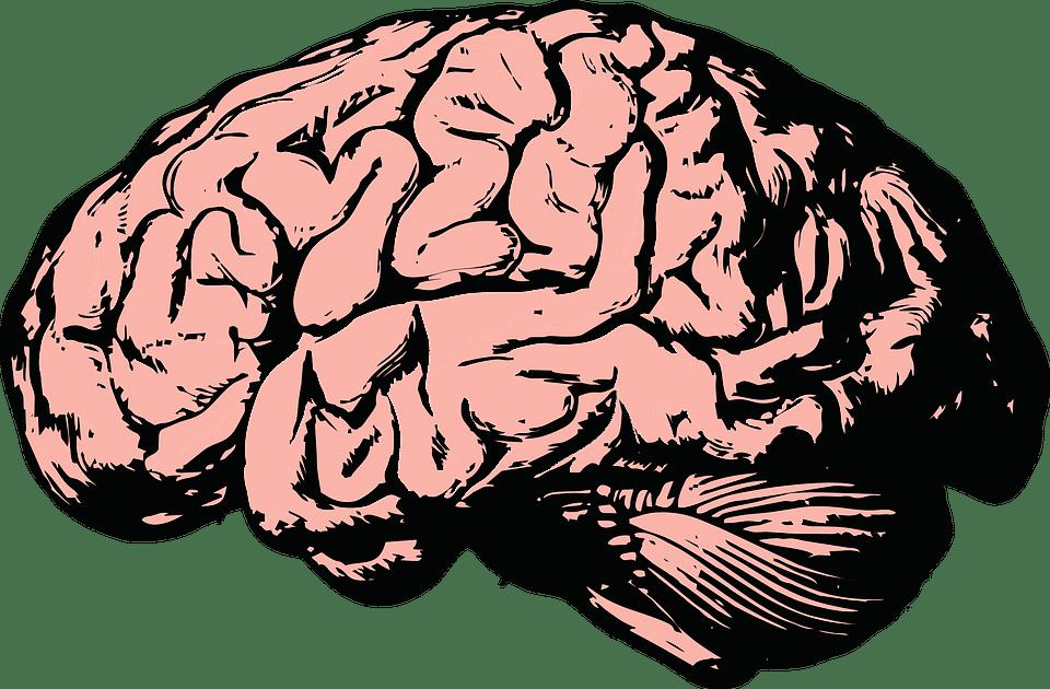 Alzheimer: Ursachen, Symptome, Diagnose Behandlung und Prävention