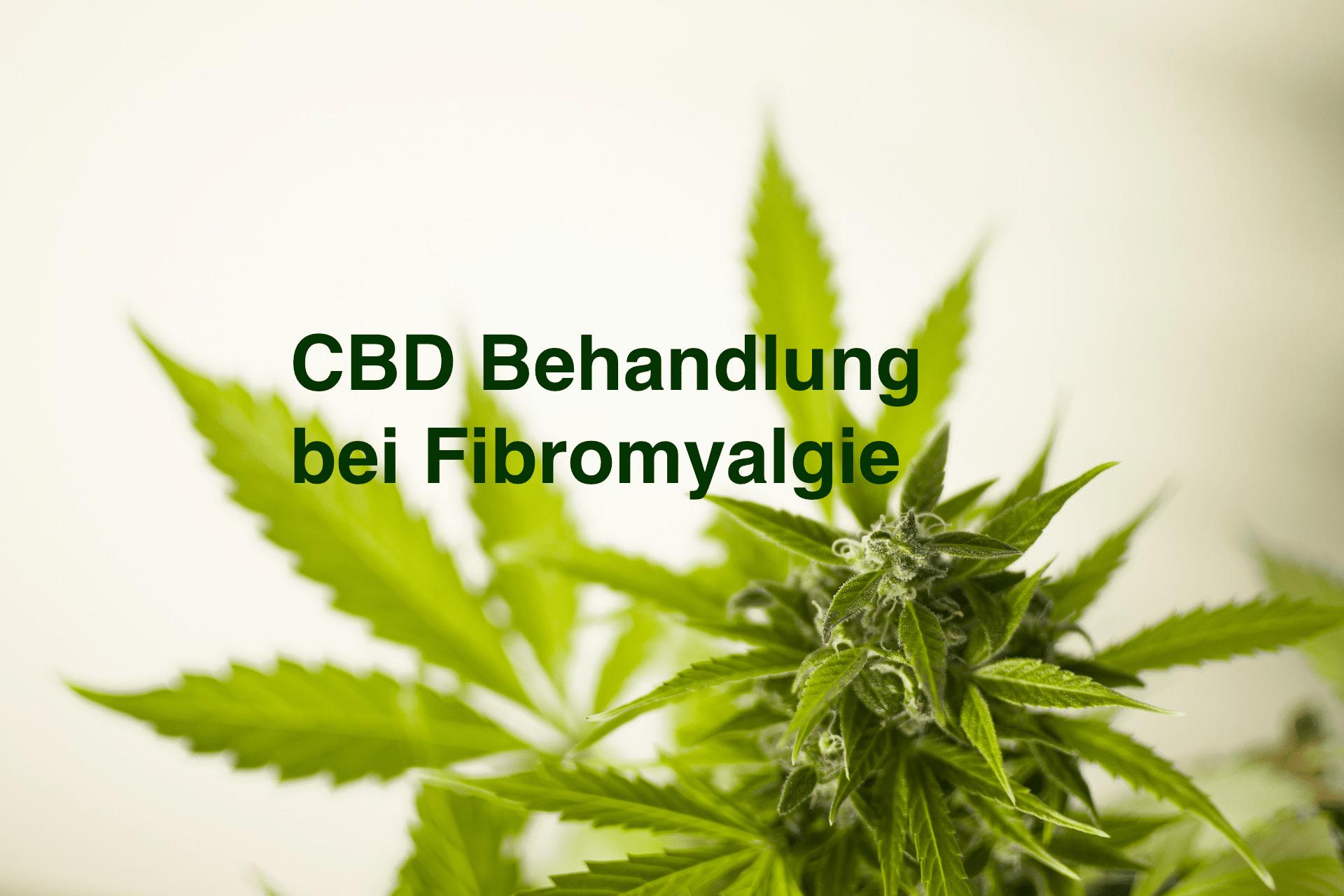 CBD bei Fibromyalgie: Wirkung von Cannabidiol auf die Behandlung von FMS