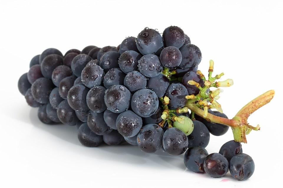 Vorteile Traubenkernöl für Haut, Haare & Gesundheit