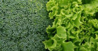 Vitamin K: Vorteile, Wirkung und Nahrungsquellen.