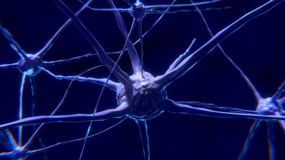 Alpha GPC Vorteile Dosierung Anwendungen und Nebenwirkungen