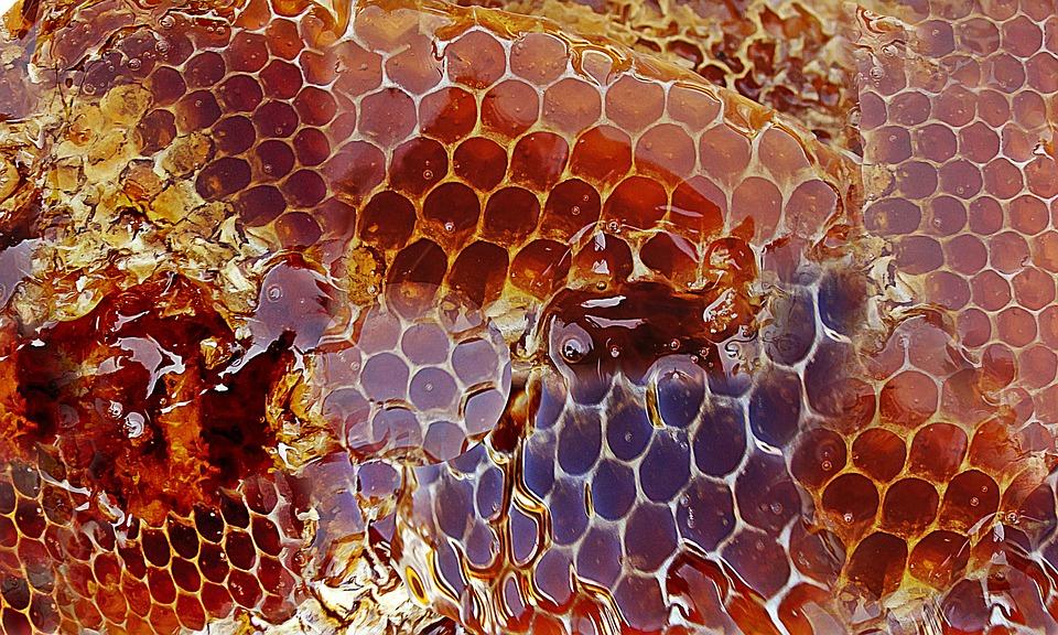 Roher Honig - Vorteile für die Heilung + 20 beliebte Honigverwendungen