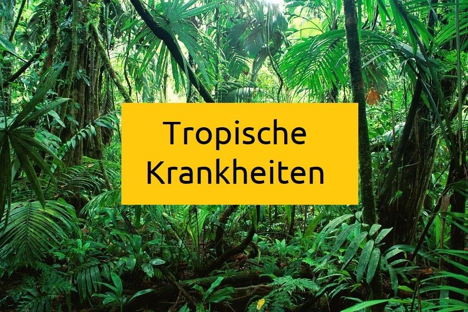 Tropenkrankheiten-tropische-krankheiten