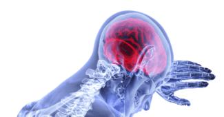 gehirntumore-arten-behandlung-test-symptome-ursachen