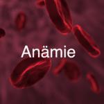 was-ist-anaemie-arten-symptome-behandlung