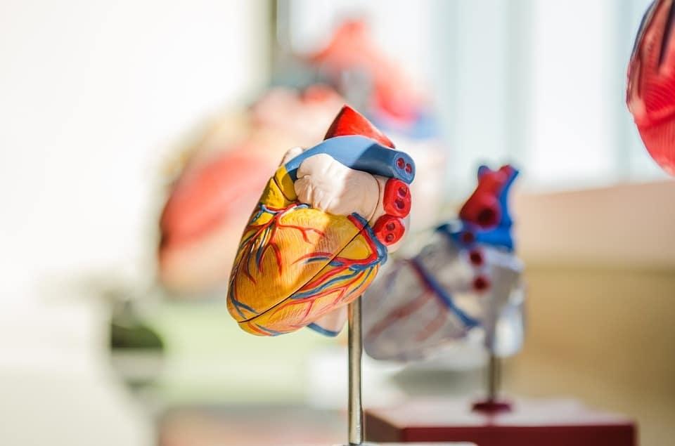 Achtung Herzinfarkt - Ignorieren Sie niemals diese 11 Symptome des Herzens
