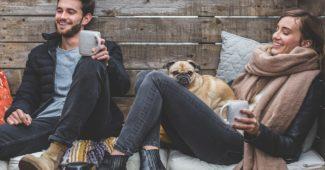 CBD Öl für Hunde - Was Sie zur Wirkung wissen müssen