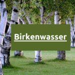 Was ist Birkenwasser? - Vorteile von Birkensaft für die Gesundheit