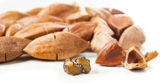 Pili-Nüsse: Die Keto-freundlichen Nüsse, die Herz und Knochen unterstützen