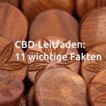 CBD-Leitfaden: 11 wichtige Fakten