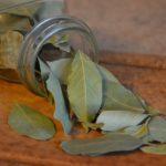 Lorbeerblatt - Vorteile für Verdauung, Wunden und Diabetiker
