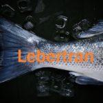 Lebertran - Darum ist das Fischöl so gesund