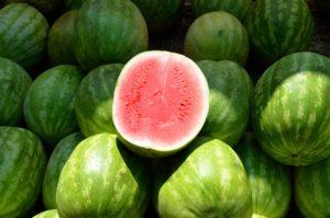 Citrullus lanatus Wassermelone Wirkung Vorteile Gesundheit