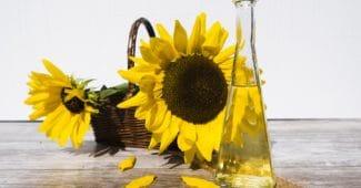 Sonnenblumenöl gut für Sie? Vorteile, Risiken und Alternativen
