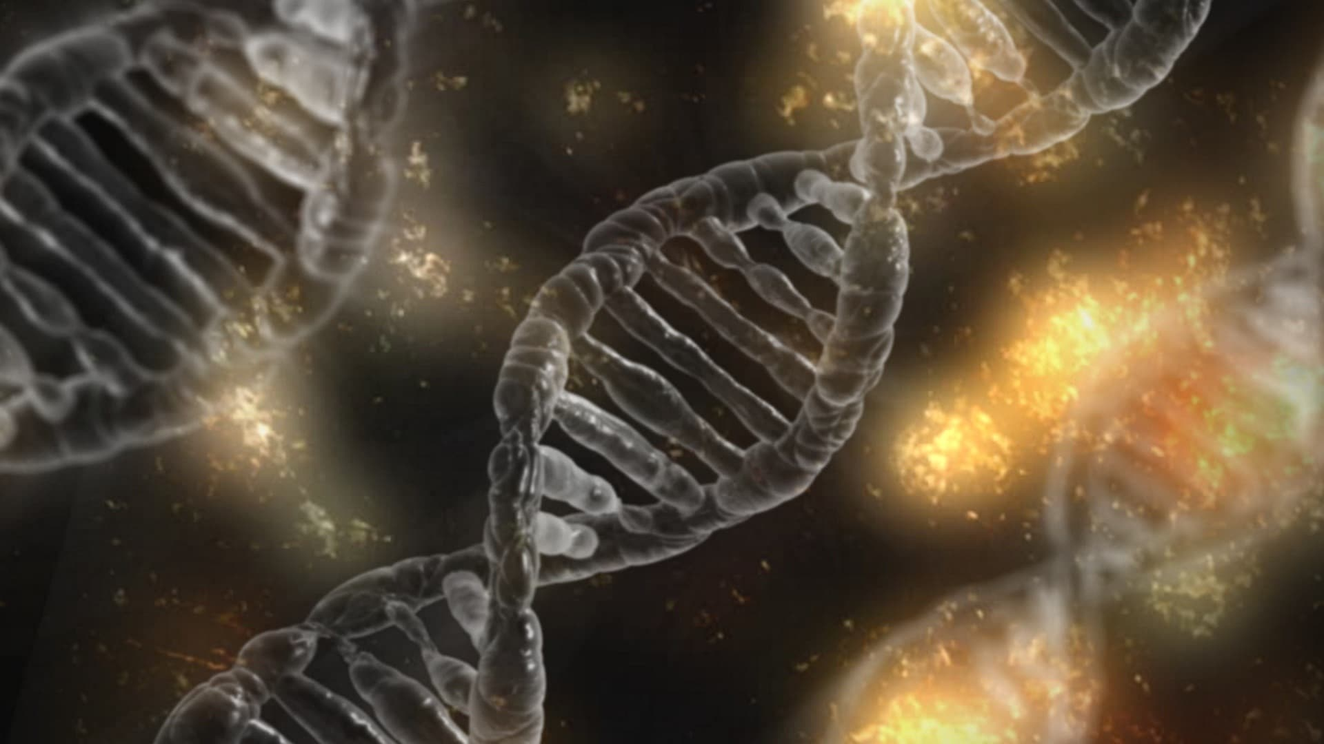 Wie genetische Störungen vererbt werden - Vom Elternteil zum Kind